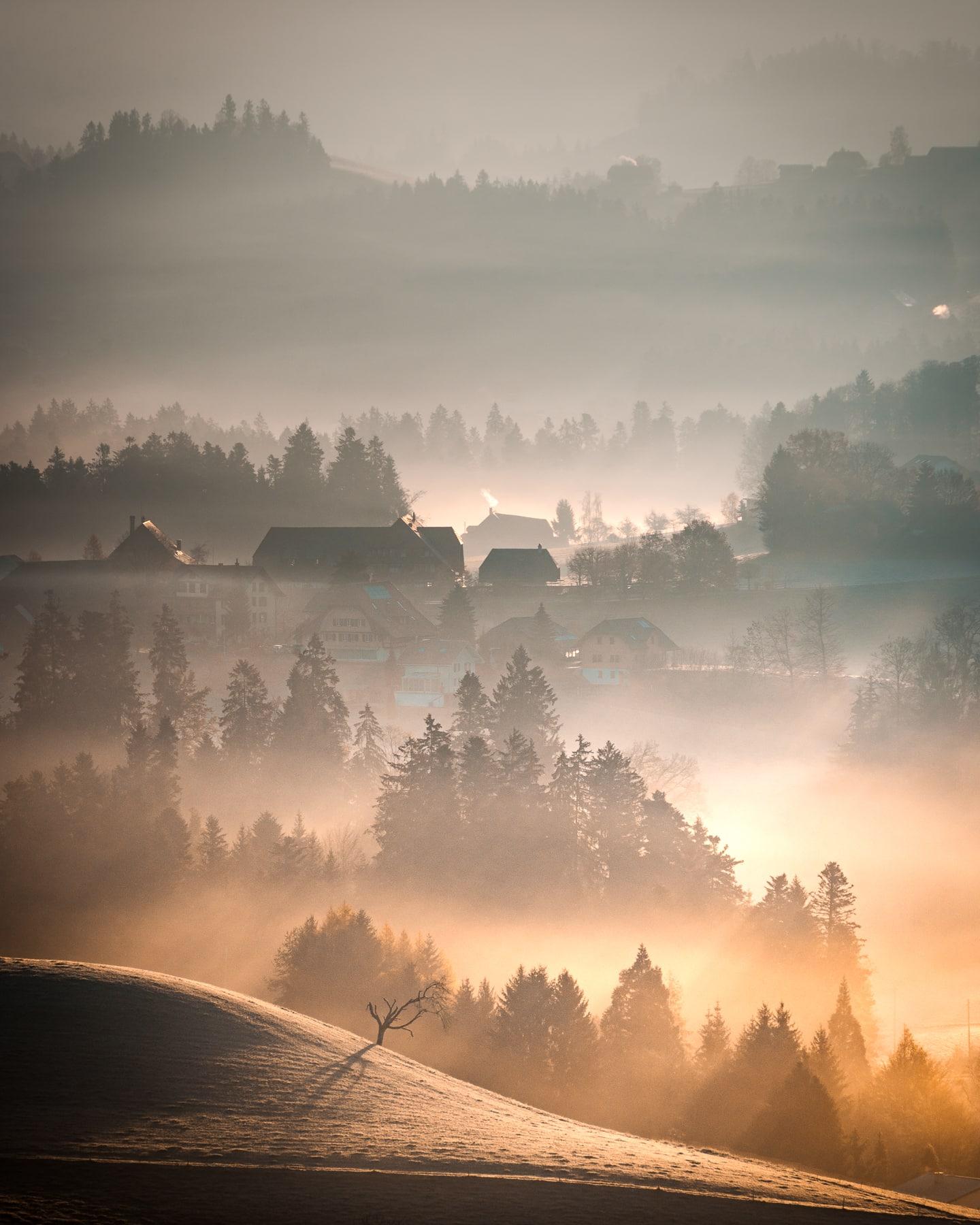 Emmental Nebel Licht