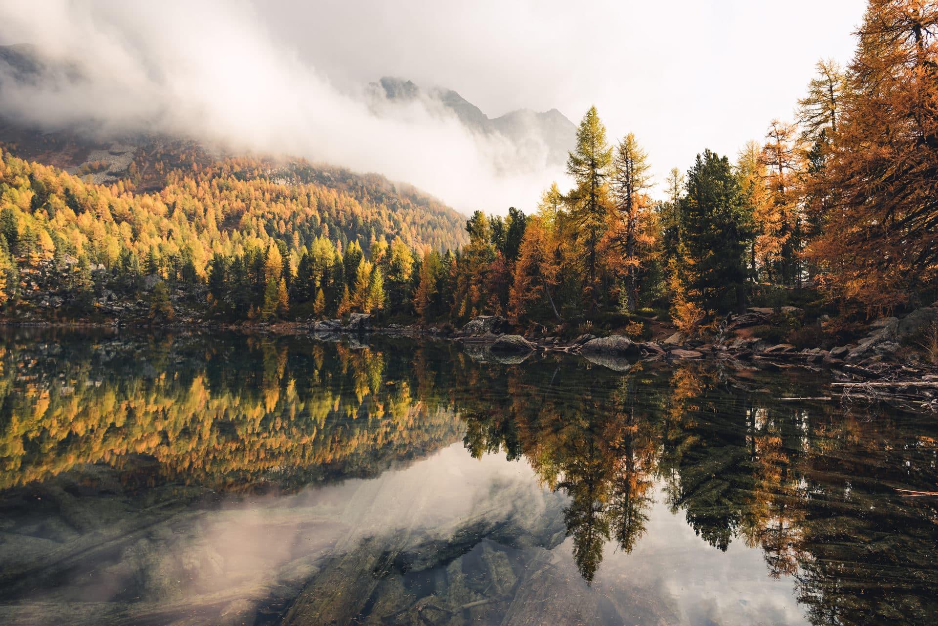 Lago di Saoseo Herbst Lärchen