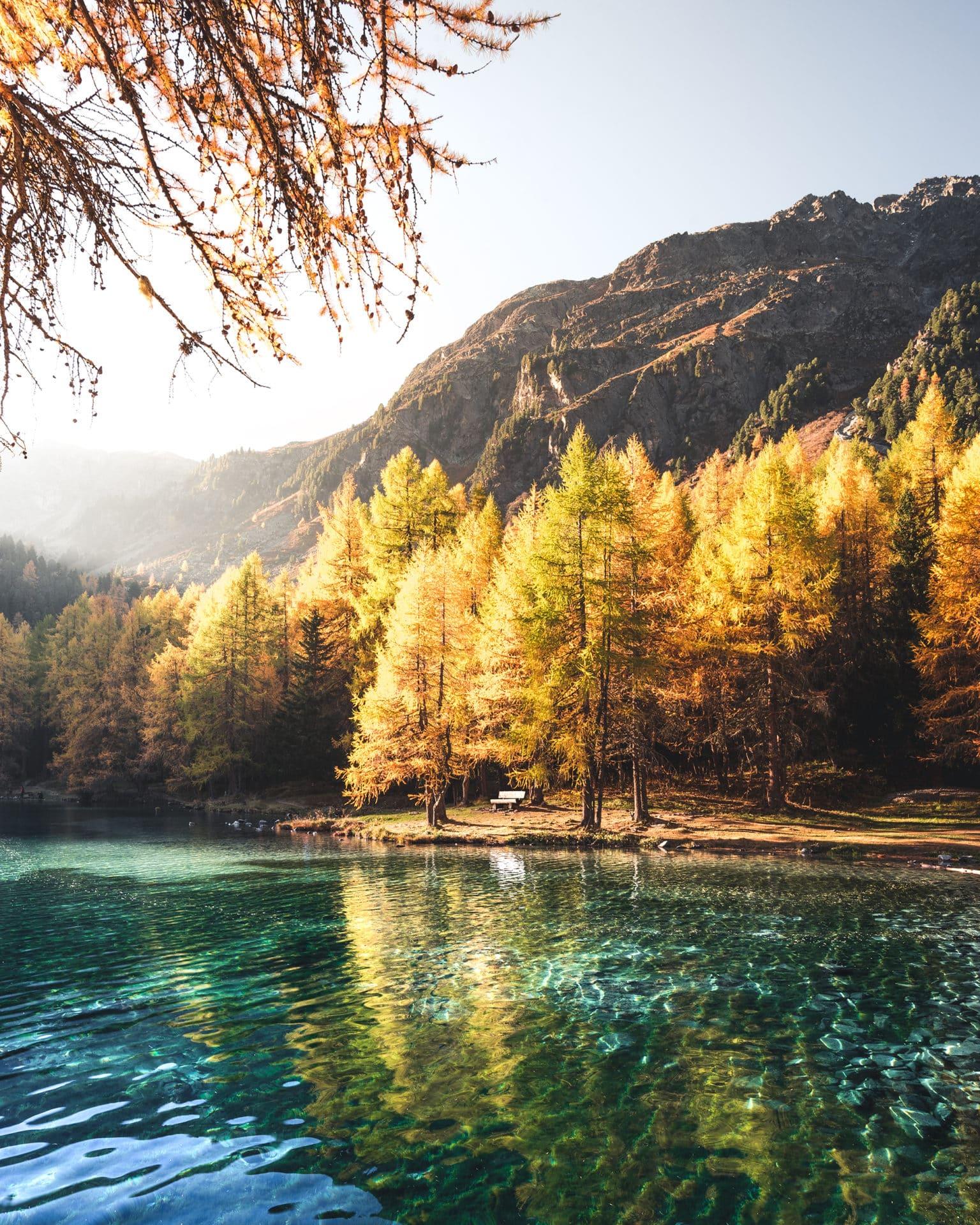 Palpuognasee Herbst Lärchen