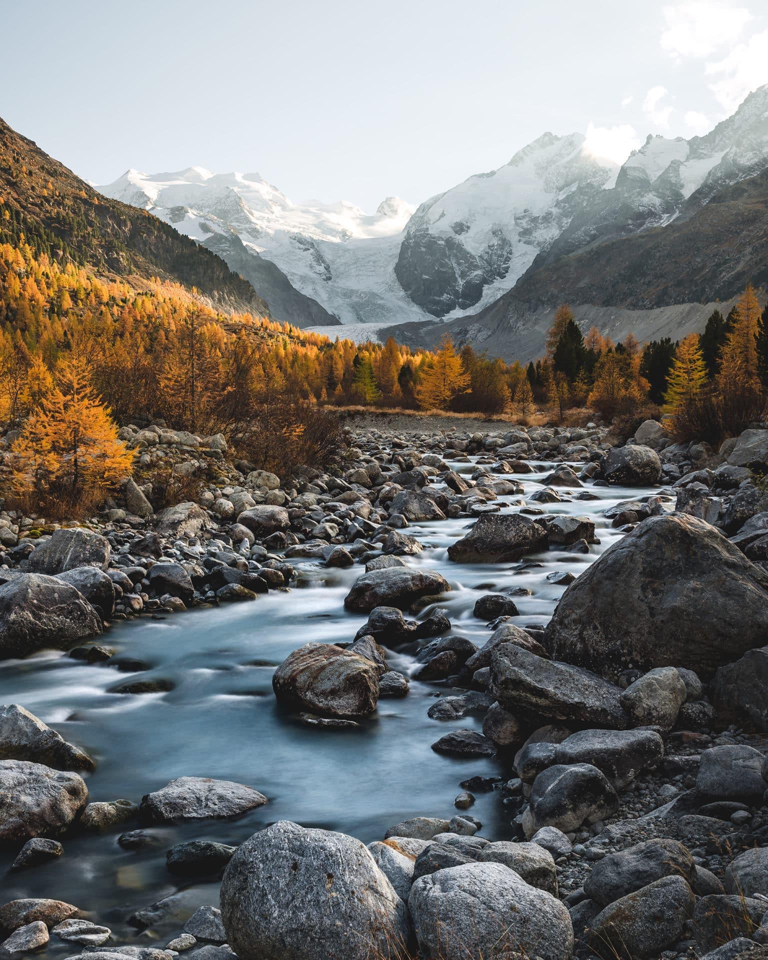 Morteratsch Tal Lärchen Herbst