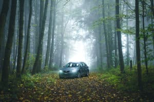 Seat Leon X-Perience – Herbstliche Stimmungsbilder