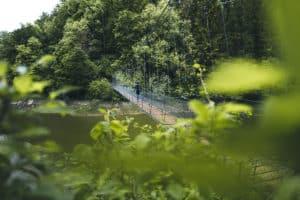 Wandern in der Fribourg Region